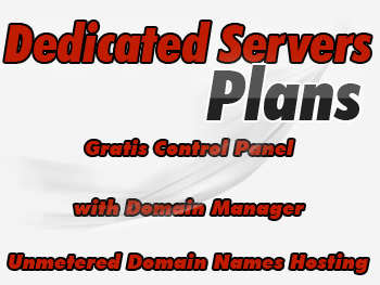 Popularly priced dedicated servers account